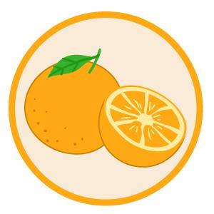 PLW_PSS_P1S1_Attributes-of-Sound_Orange
